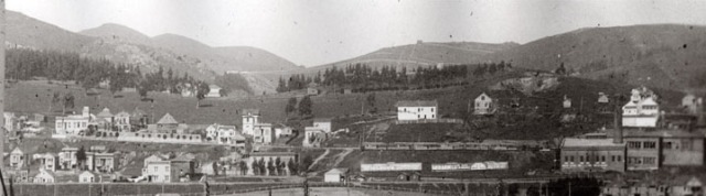 Panorama of Sunnyside, about 1906: (Photo courtesy Jacqueline Proctor, MtDavidson.org.)