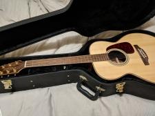 Takamine_rosewood_guitar