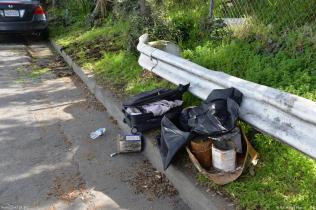 Trash haul from February 2019 workday at the Circular Ribbon Garden. Photo: Bill Wilson